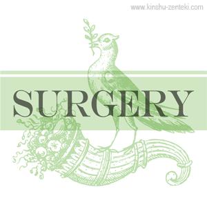 子宮筋腫全摘出手術の記録